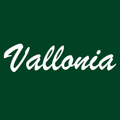VALLONIA Альгинатные маски